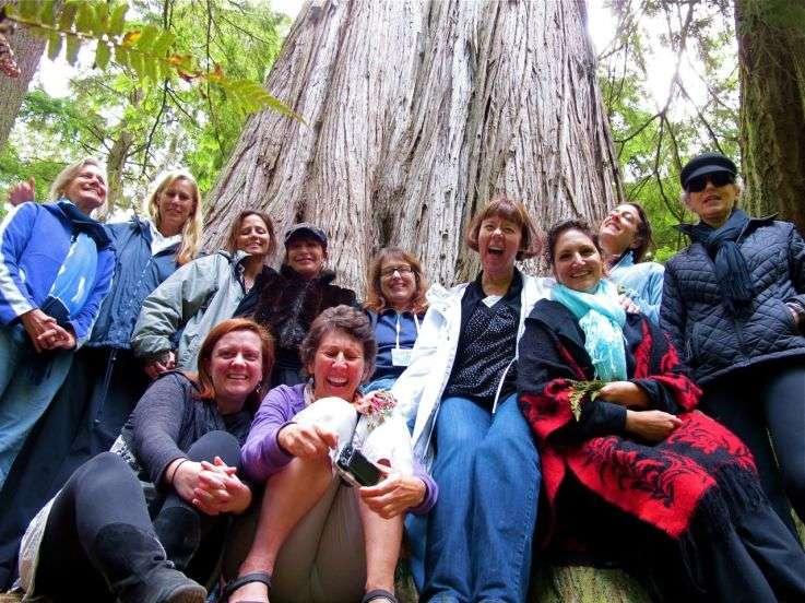 Gathering2011flow53